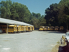 25mm Buses