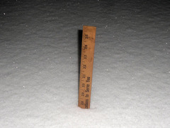 Almost 28 inches (71 cm.) now