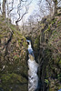 Ingleton waterfalls trail: Baxenghyll Gorge