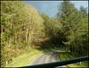 sunlight on a road near Seaton