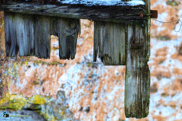 The wing of an old barn door