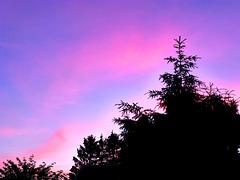 DE - Weilerswist - Evening Sky
