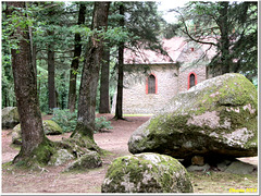 The hidden chapel in the depth of the forest