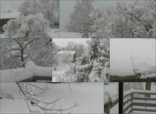 .. snowscape 2015