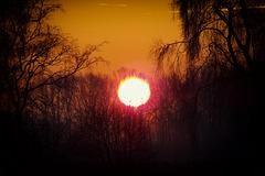 DSCF0139 Sunrise Olden Eibergen