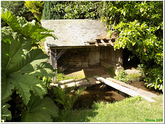 Some slates are missing, the bridge is wobbly - but still, the old washhouse is so charming