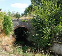 Rivière 51130 Vertus