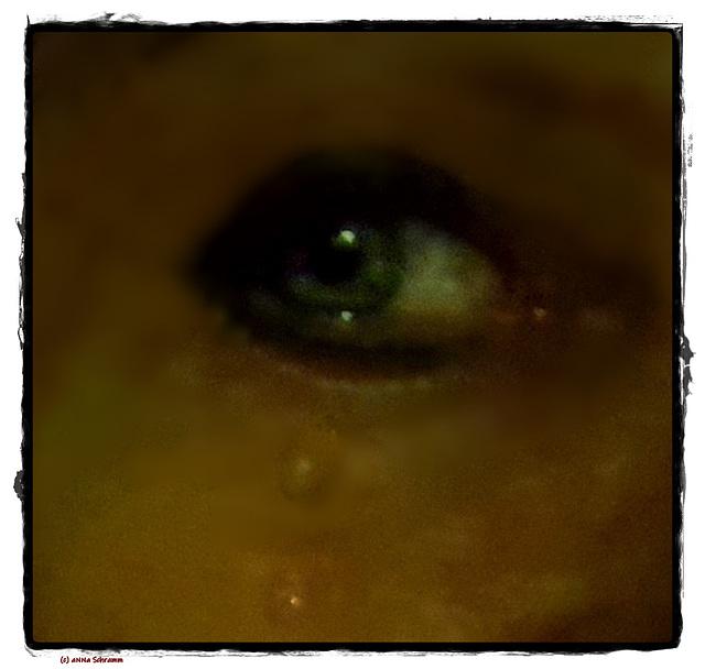 Tränen ... Soledat