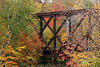 Railroad trestle in the woods