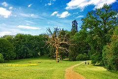 Im Kaarzer Schlosspark