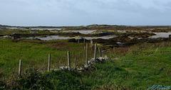 HFF –  Connemara Fence