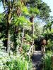 Giardino Botanico André Heller. ©UdoSm