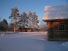 Finland - The golden light