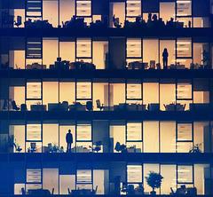 Ventanas indiscretas  -  Des fenêtres indiscrètes - Indiscreet windows