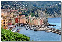 Camogli : il porto turistico - (798)