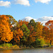 The Lakefront in Fall