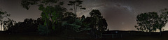 In the Trees 360