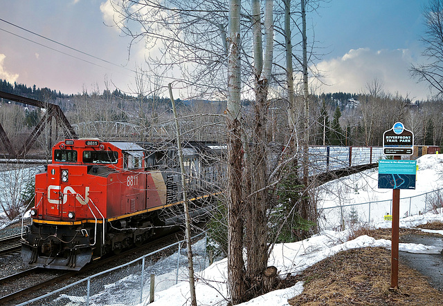 Lumber train in Quesnel, BC