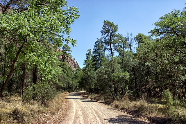 South Fork of Cave Creek, Chiricahua Mountains