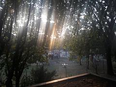 Una cascata di luce che il sole ha regalato alla fotografia!