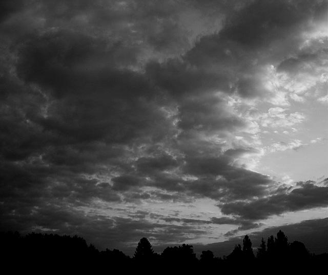 Cinquante nuances de gris.