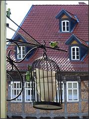 Quedlinburg, Harz 301