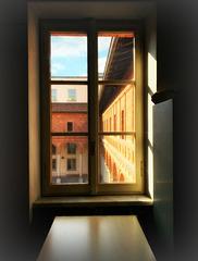 la finestra sul cortile