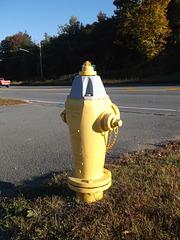 Borne à incendie en liberté / Hydrant freedom