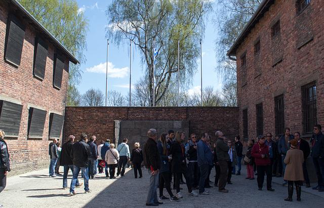Poland Auschwitz (#2340)