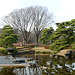 Tokyo, Reflection in the Ninomaru Pond in the Garden of the Imperial Palace