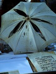 """"""" Chantons sous la pluie """""""