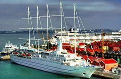 Venice Port 3. ©UdoSm