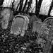 Poběžovice, jüdischer Friedhof