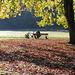 Die große Wiese im Herbst