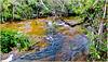 Ilhéus : i colori  del rio Tijupe