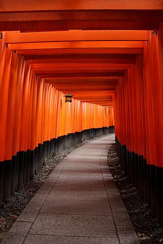 Path at Fushimi Inari-Taisha