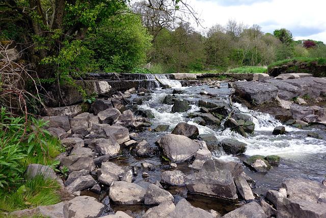 Ball Grove park & river.