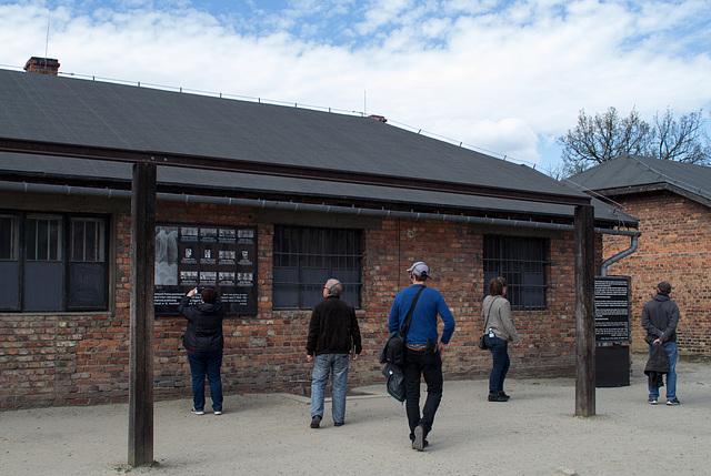 Poland Auschwitz (#2343)