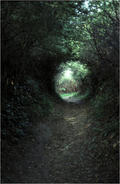 Ile de Groix 2 - Le tunnel