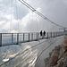 Bridge Without Purpose