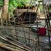 Hmong fences