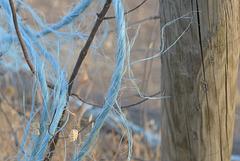 Blue rope,  HFF