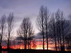 An Evening in November