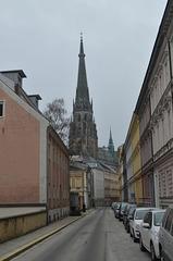 Linzer Mariendom (View from Waltherstraße)
