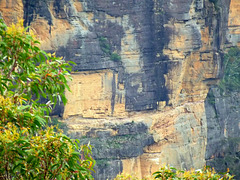 Cliff, Blue Mountains