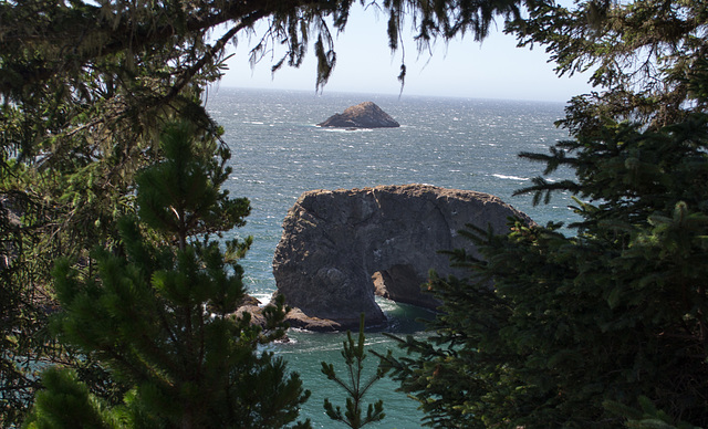 US 101 Windy Point / Arch rock (#1043)