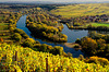 Indian Summer in Weinfranken - Indian Summer in Franconia