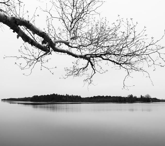 Automne sur la rivière des Outaouais