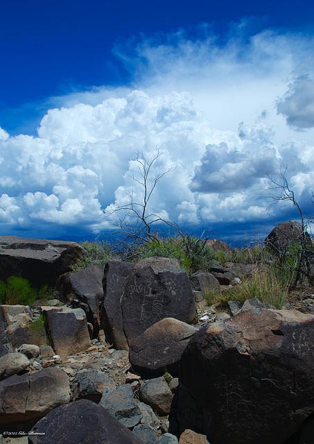 Three Rivers Petroglyphs, NM