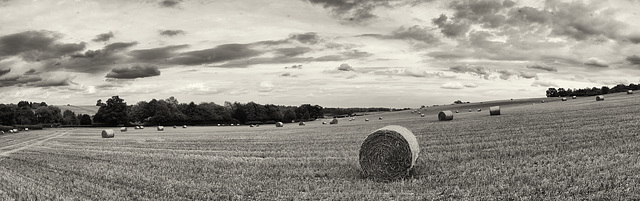 straw bales panorama